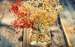 6910697-flowers-jar